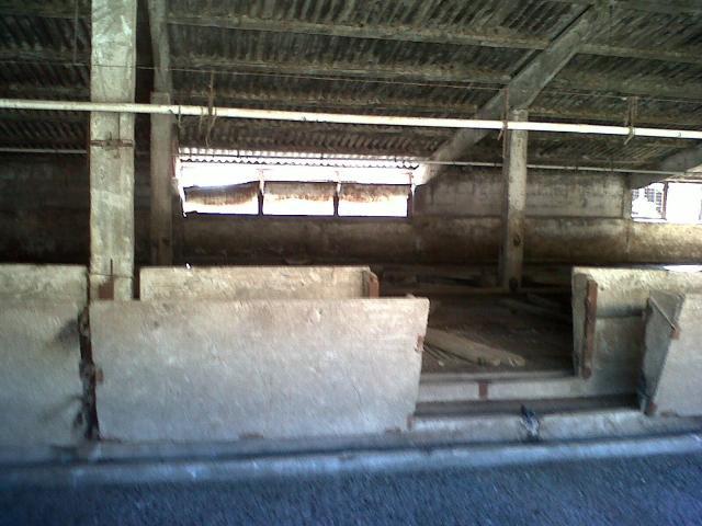Lichidator judiciar, vand proprietate imobiliara, Ghiorac, jud. Bihor - 2/6