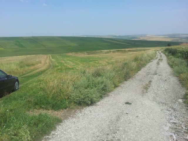 Lichidator judiciar, vand teren - 10.000 mp - Tureni - 4/4
