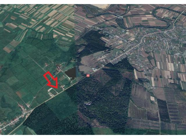 Teren  19.569 mp, situat in localitatea Lapusel, comuna Recea jud. Maramures, Autoturism Audi A3 - 1/4