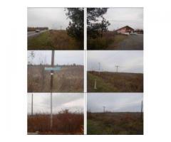 Teren  19.569 mp, situat in localitatea Lapusel, comuna Recea jud. Maramures, Autoturism Audi A3