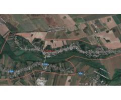 15,34 HA Teren 4500 EUR/HA(Tva inclus) - Dambovita-Niculesti