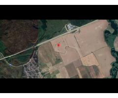 Teren extravilan Cernica 4780 mp