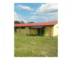 Teren și construcții: hală și locuință de serviciu